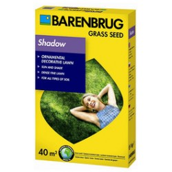 Barenbrug Shadow Gazon