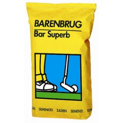 Barenbrug Superb